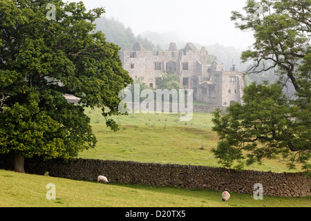 View of the ruins of Bolton Abbey, Yorkshire Dales National Park, Yorkshire Dales, Yorkshire, England, Great Britain, - Stock Photo