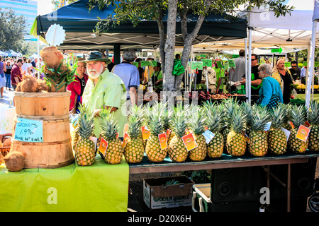 Fresh Pineapples on sale at the weekly Sarasota farmers market - Stock Photo
