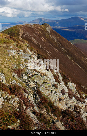 Looking back over Causey Pike from Scar Crags, Skiddaw is visible in the background. - Stock Photo