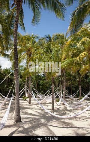 Hammocks hang from coconut trees at Xel-Ha Water Park, Tulum, Riviera Maya, Quintana Roo, Mexico - Stock Photo