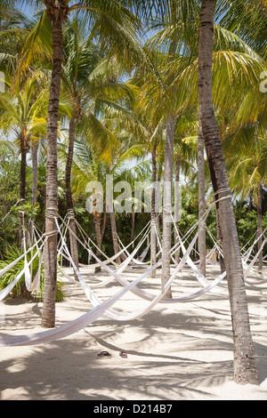 Hammocks hanging from coconut trees at Xel-Ha Water Park, Tulum, Riviera Maya, Quintana Roo, Mexico - Stock Photo