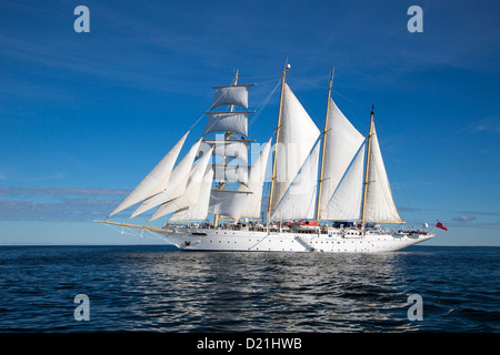 Sailing cruise ship Star Flyer under full sail, Baltic Sea, Finland, Europe - Stock Photo