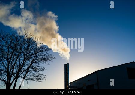 biomass fueled power plant pdf