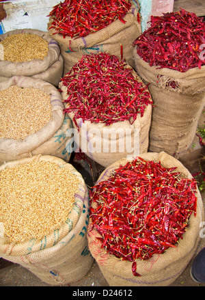 RED HOT CHILLIES IN SACKS  MYSORE MARKET INDIA - Stock Photo
