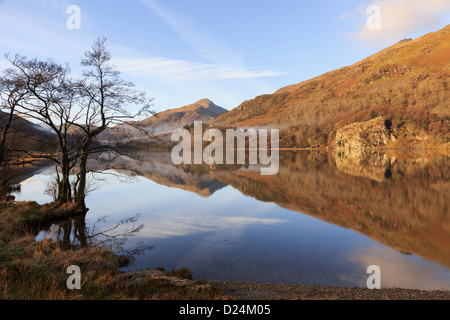 Tranquil scene with view to Yr Aran and still water reflections in Llyn Gwynant lake in mountains of Snowdonia National Park. North Wales UK Britain