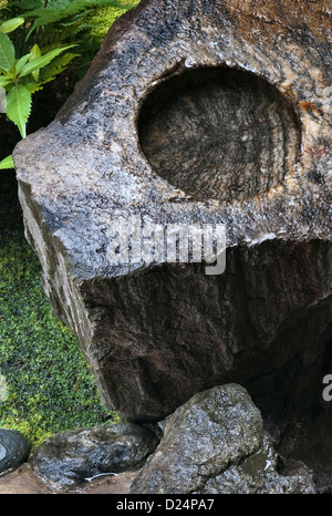 Kyoto, Japan. A tsukubai or water basin for ritual washing or purification at Jiko-in Temple - Stock Photo