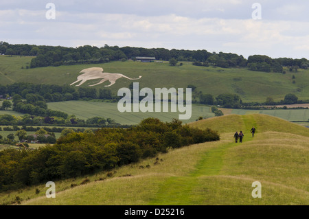 View towards White Lion chalk figure on hillside with start Ridgeway long-distance footpath in foreground Whipsnade - Stock Photo