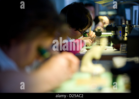 Staff members assembles a watch in the workshop of Nomos Glashuette watchmakers in Glashuette, Germany, 4 December - Stock Photo