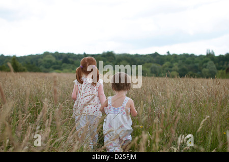 Two little girls walking in a field holding hands, rear view - Stock Photo