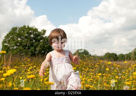 A little girl walking in a wild flower meadow - Stock Photo