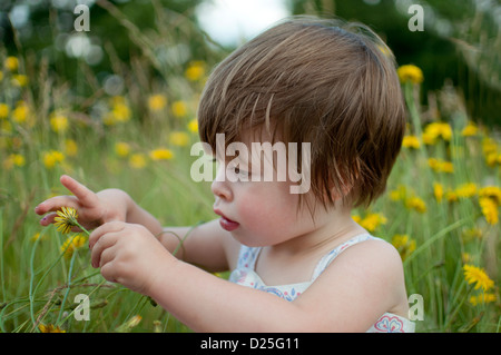 A little girl sitting in a meadow, looking at a wild flower - Stock Photo