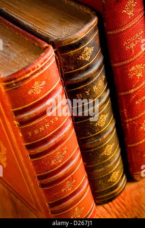 Antique Leather Bound Books - Stock Photo