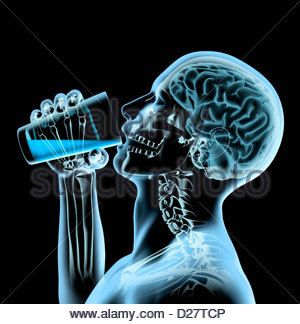 X-ray of man and brain drinking from glass - Stock Photo