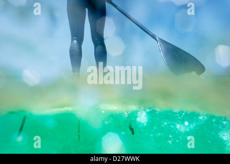 Stand up paddle surf. - Stock Photo