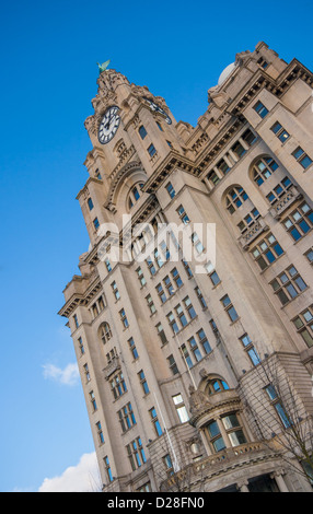The Royal Liver Building in Liverpool, England. - Stock Photo