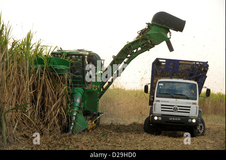 ANGOLA Malange , PAC Pòlo Agroindustrial de Capanda, Biocom Project, joint venture of Brazil company Odebrecht and - Stock Photo