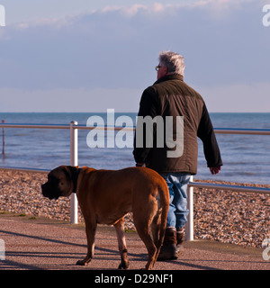 Rear View Of A man Wearing A Coat walking His Dog - Stock Photo