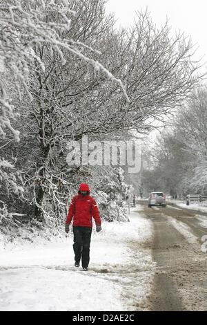 Yelverton, Devon, UK. 18th January 2013. A walker framed by snow covered trees on the edge of Dartmoor near Yelverton - Stock Photo