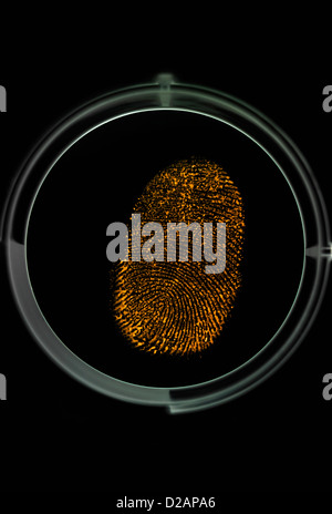 Finger print being identified as a password to access information - Stock Photo