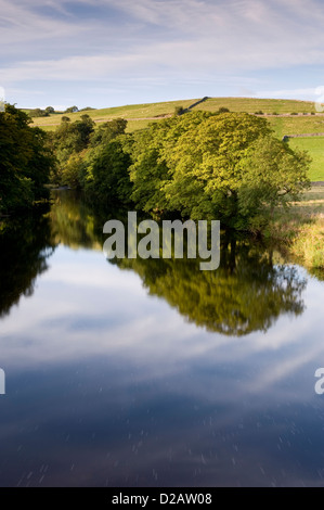 Mirror images on water & riverbank trees reflected on calm, still, scenic,  River Wharfe on sunny summer day - Burnsall, - Stock Photo