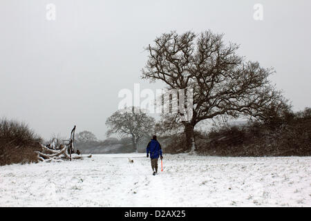 January 18th 2013. South West London, England UK. Four inches of snow have fallen in the fields of Tolworth Court - Stock Photo