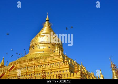 Pilgrims walk around the Shwezigon Paya Golden Pagoda in Paya, Bagan, Myanmar. - Stock Photo