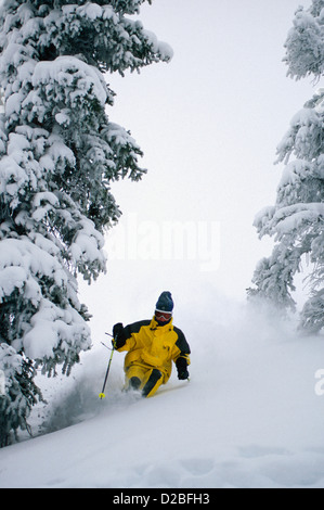 Colorado. Crested Butte. Powder Skiing - Stock Photo