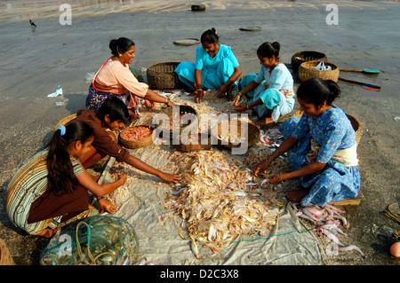 Local fish market mumbai india stock photo royalty free for Chinese fish market near me