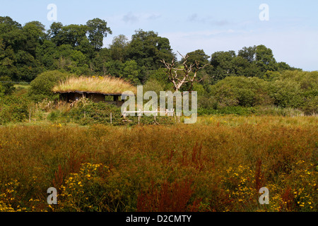 A bird hide at the Teifi marshes nature reserve, Welsh Wildlife Centre, Cilgerran, Pembrokeshire, Wales, UK - Stock Photo