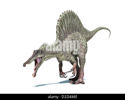 Spinosaurus dinosaur computer artwork This dinosaur lived 95 to 80 million years ago during the Late Cretaceous - Stock Photo