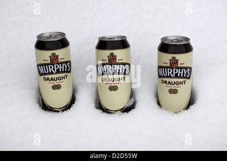 Three cans of Murphys Beer chilling in the Snow - Stock Photo