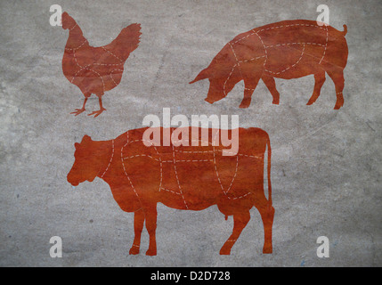 A butcher's diagram of a cow, a chicken and a pig - Stock Photo