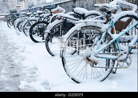 Cambridge, UK. 21st January, 2013. Cycles are covered in snow in Cambridge. Further snow fell overnight creating - Stock Photo