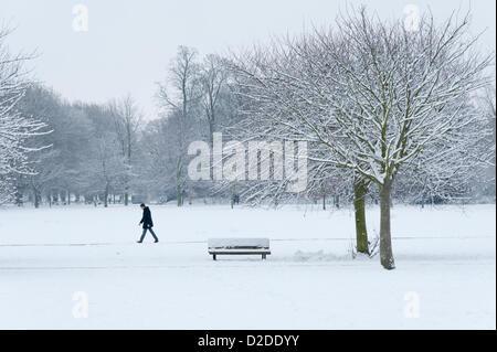 Cambridge, UK. 21st January, 2013. A man walks on Jesus Green in Cambridge. Further snow fell overnight creating - Stock Photo