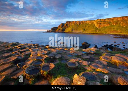 Evening light on the Giant's Causeway, County Antrim, Northern Ireland. - Stock Photo