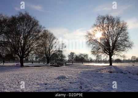 Bushy Park, London, England, UK. 21st Jan, 2013. The Heron Pond has frozen in Royal Bushy Park near Teddington, - Stock Photo