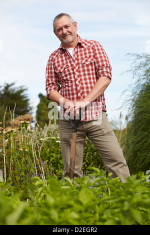 Portrait of mature man digging in garden allotment - Stock Photo