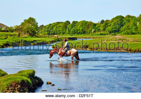 Horse And Female Rider Crossing River In Hafren Forest On