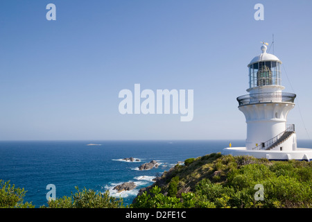 Australia, NSW, Lower North Coast, Great Lakes Area, Myall Lakes National Park, Sugarloaf Point Lighthouse, Seal - Stock Photo