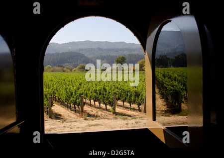 California, Sonoma Valley vineyards. View from the vintage Napa Valley Wine Train. - Stock Photo