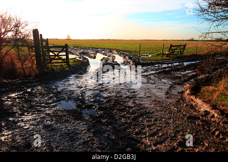Entrance to muddy wet field in Lincolnshire, welcome to rural country life. Wellington boots a must, don't forget - Stock Photo