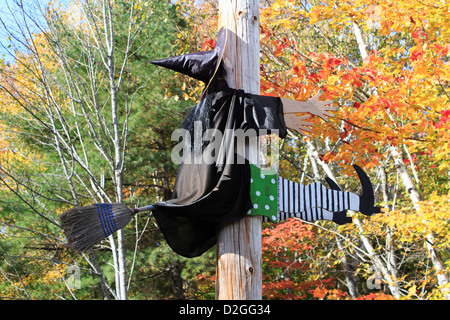 Witch flying on a broom  Halloween decorations  Halloween