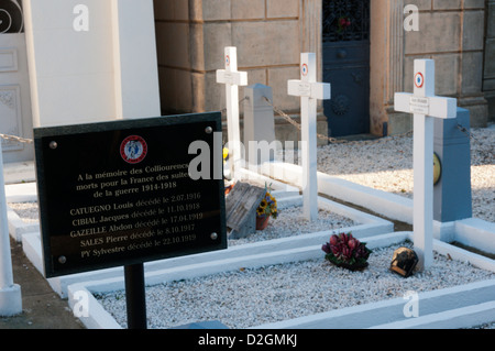 Sign in front of WWI graves in Collioure cemetery. DETAILS IN DESCRIPTION. - Stock Photo