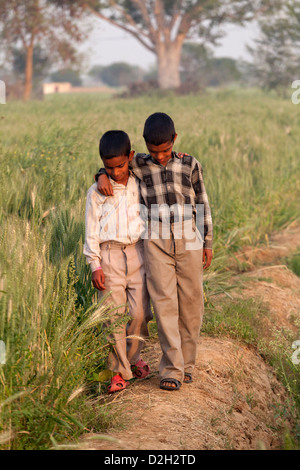 India, Uttar Pradesh, Agra, brothers with arms around each others shoulders walking through field - Stock Photo