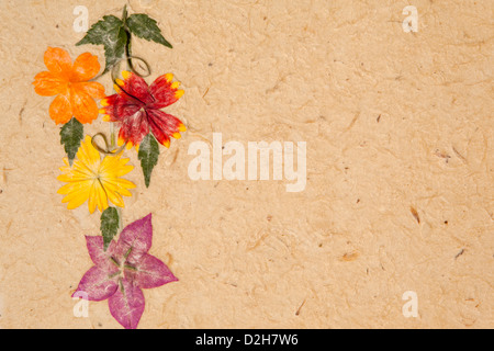Madagascar, Ambalavao, flower petals laid into Antaimoro Avoha bark hand made paper - Stock Photo