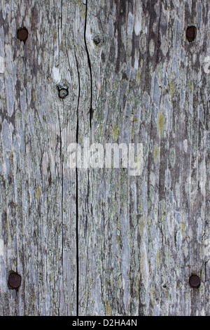 Background composed of planks of old wood and a four rusty nails - Stock Photo