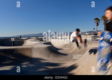 Skater at the skate park in Venice Beach, Los Angeles, California, United States of America, USA - Stock Photo