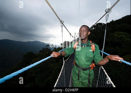 Nyungwe Canopy Walk, Nyungwe Forest National Park, Rwanda - Stock Photo