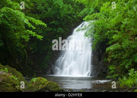 Glenoe Waterfall, County Antrim, Northern Ireland. - Stock Photo
