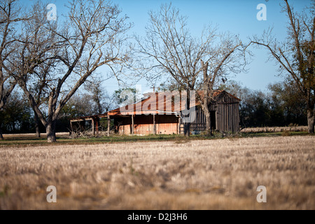 Barn with weathered wood sides and rusted metal roof located adjacent to a field photographed in low afternoon fall - Stock Photo